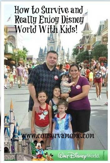Survive and Really Enjoy Disney World With Kids: Where We Stayed