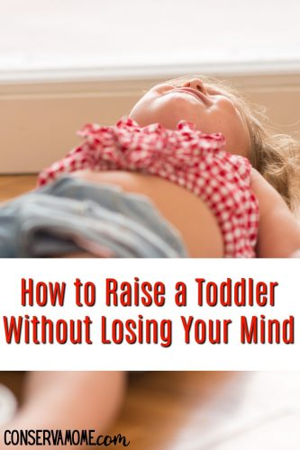 How to Raise a toddler without losing your mind