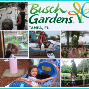 Our Busch Gardens Tampa Adventure