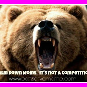 Calm down Moms, It's not a Competition!