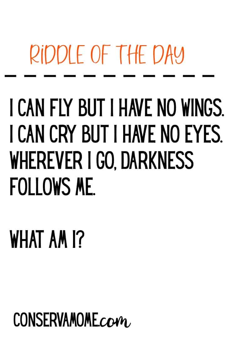 Check out this fun riddle of the day to get your brain moving and thinking! I can fly but I have no wings. I can cry but I have no eyes. Wherever I go, darkness follows me. What am I?