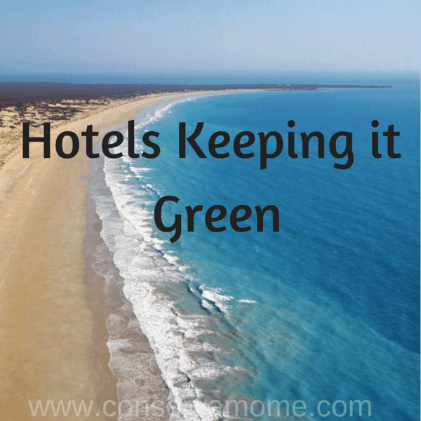 Eco Friendly Hotels – Hotels Keeping it Green!