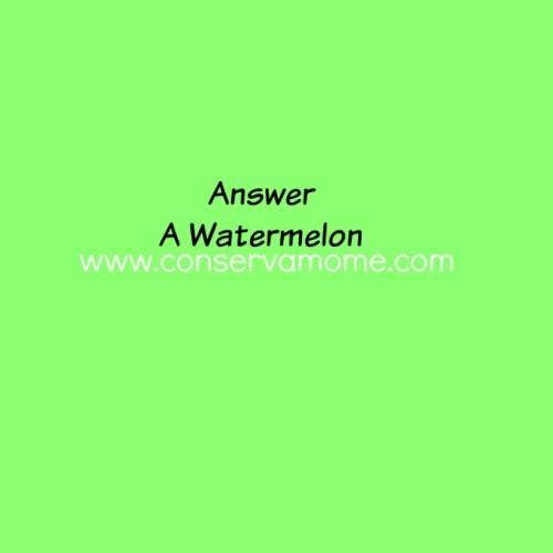 watermelonanswer