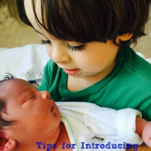Tips for Life with a Toddler & Newborn