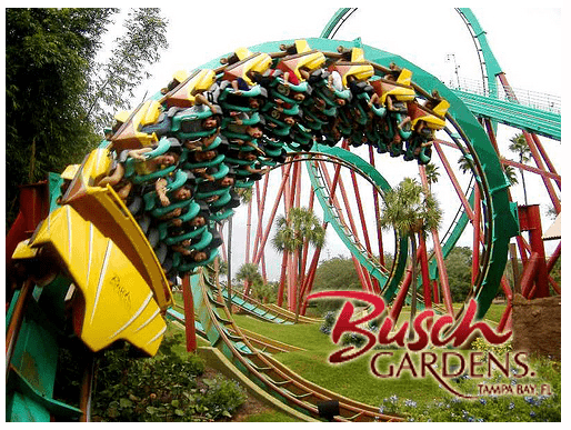Free Admission To Busch Gardens Sea World Florida For Florida First Responders Conservamom