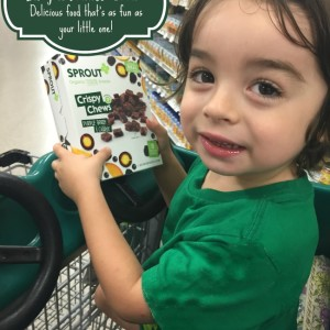 Sprout Baby & Toddler Food: Delicious Food That's as fun as your Little one!