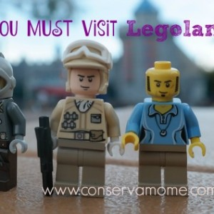 10 Reasons You Must Visit Legoland Florida