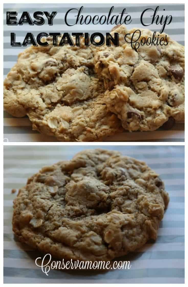 These delicious and Easy Chocolate Chip Lactation Cookies are great for helping increase breast milk supply.