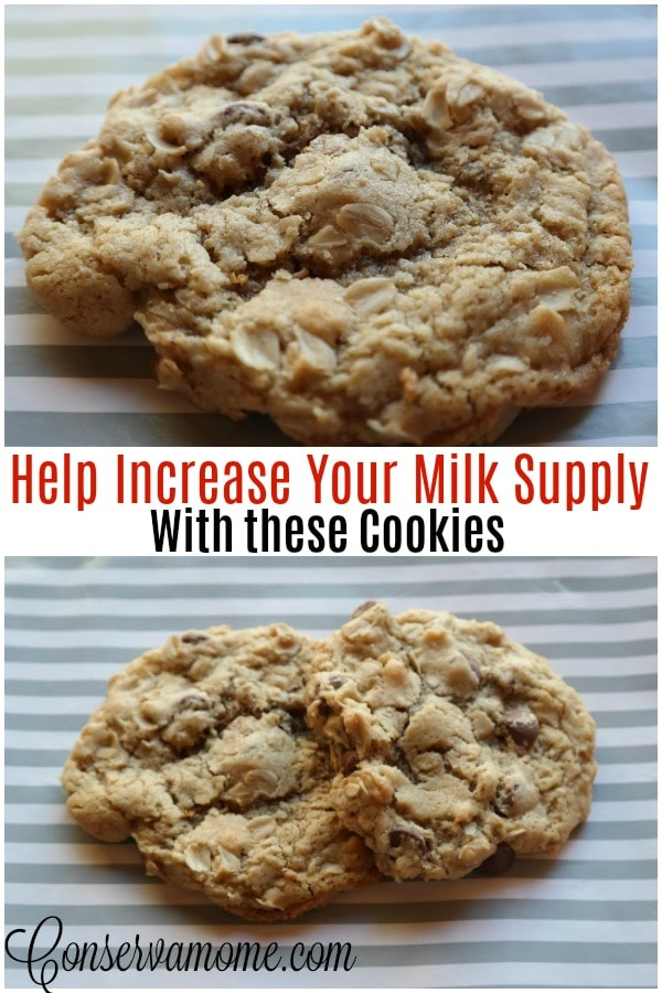 Easy Chocolate Chip Lactation cookies
