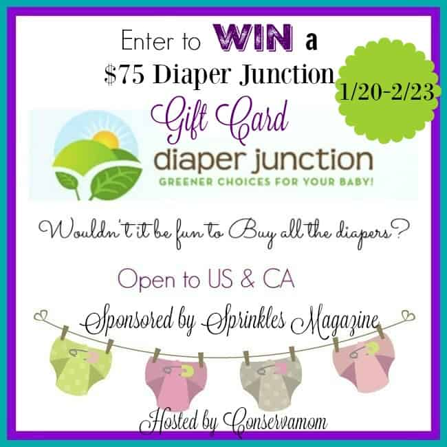 diaperjunction3
