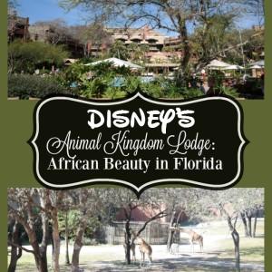 Disney's Animal Kingdom Lodge : African Beauty in Florida #ZootopiaEvent