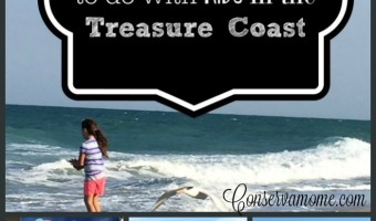 Top 10 Things To Do With Kids in the Treasure Coast