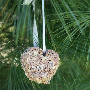 DIY Bird Seed Ornament