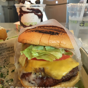 BurgerFi: A Delicious Experience of Freshness & Gourmet Uniqueness