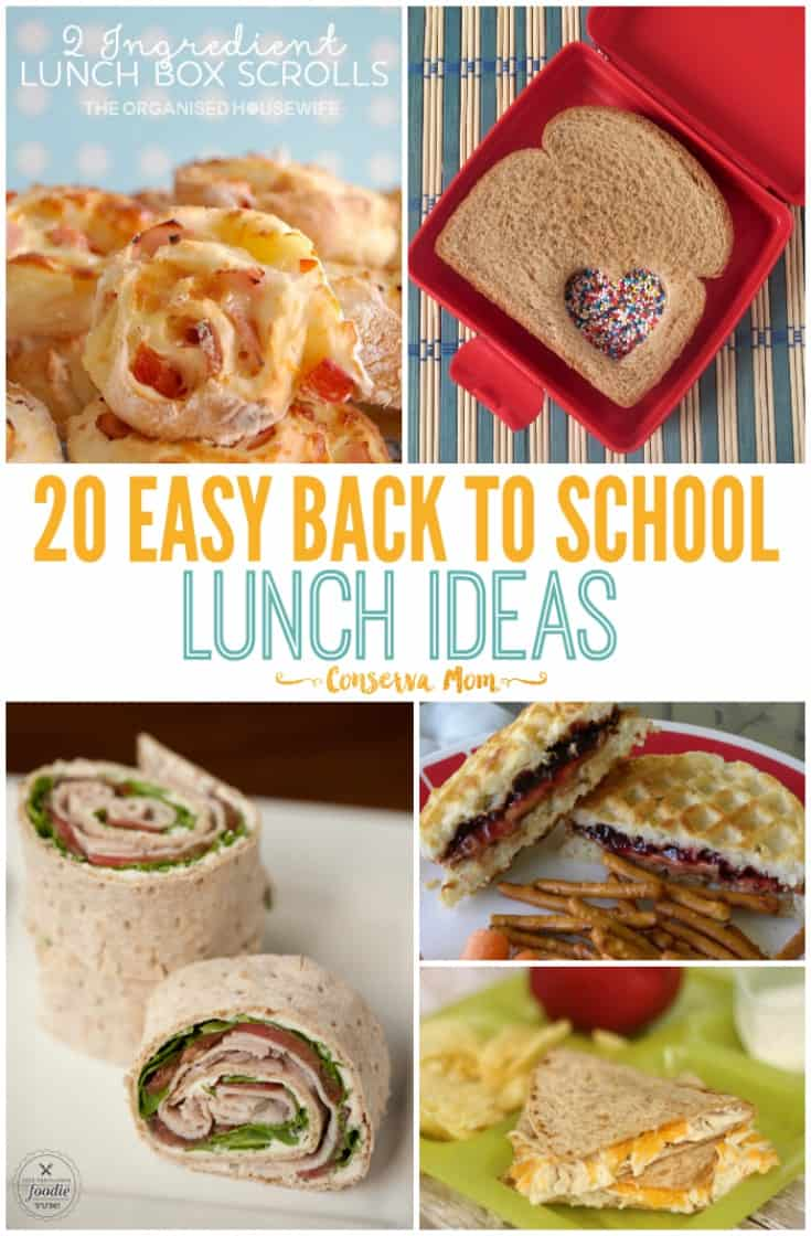 Back to School Just got tastier with these 20 Easy Back to School Lunch Ideas. These creative ideas will start your little one's year off just right!