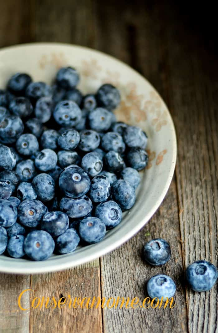 blueberrydonut