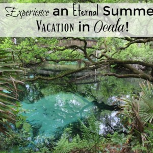 Experience an Eternal Summer Vacation in Ocala !