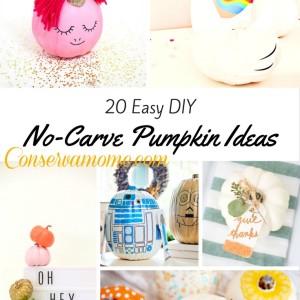 20 Easy DIY No Carve Pumpkin Ideas