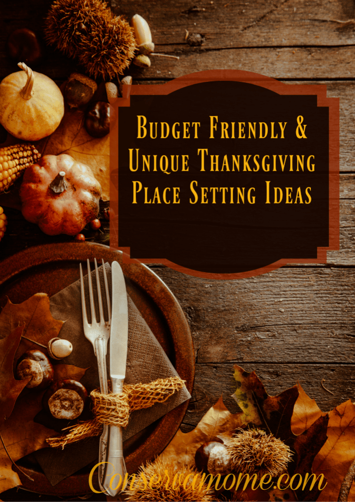 Looking for some fun Budget Friendly & Unique Thanksgiving Place setting ideas? Look no further!