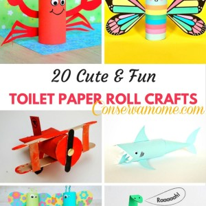 20 Cute & Fun Toilet Paper Roll Crafts