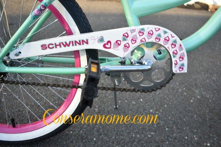 schwinn7