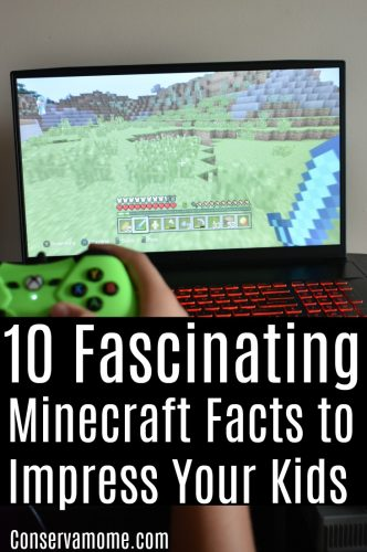Fascinating Minecraft facts
