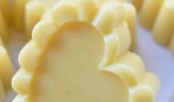 3 Ingredient Lotion Bars – Easy DIY !