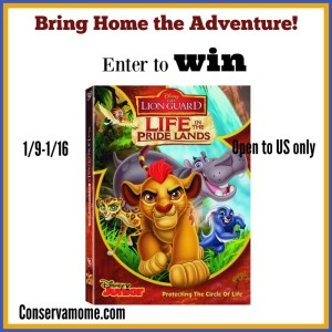 Join the Fun with THE LION GUARD: LIFE IN THE PRIDE LANDS DVD+ Giveaway