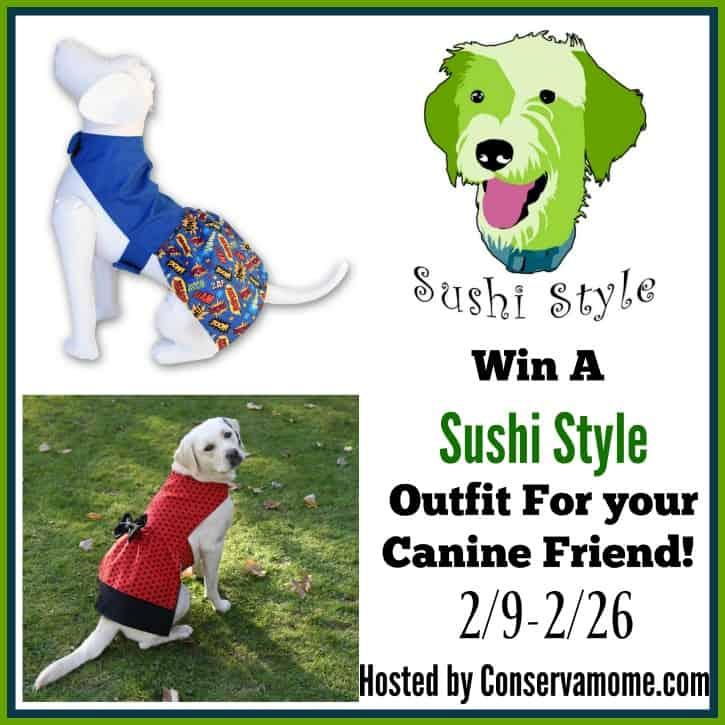 sushi style dog fashion