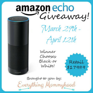 Amazon Echo Giveaway ends 4/12