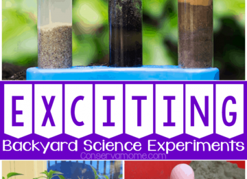Backyard Science Experiments for kids