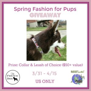 Spring Fashion for Pups Giveaway