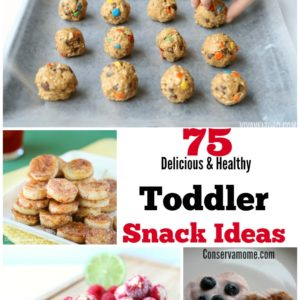 75 Delicious & Healthy Toddler Snack Ideas