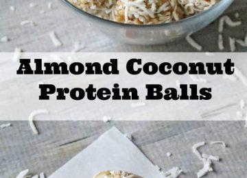 almond coconut protein bars