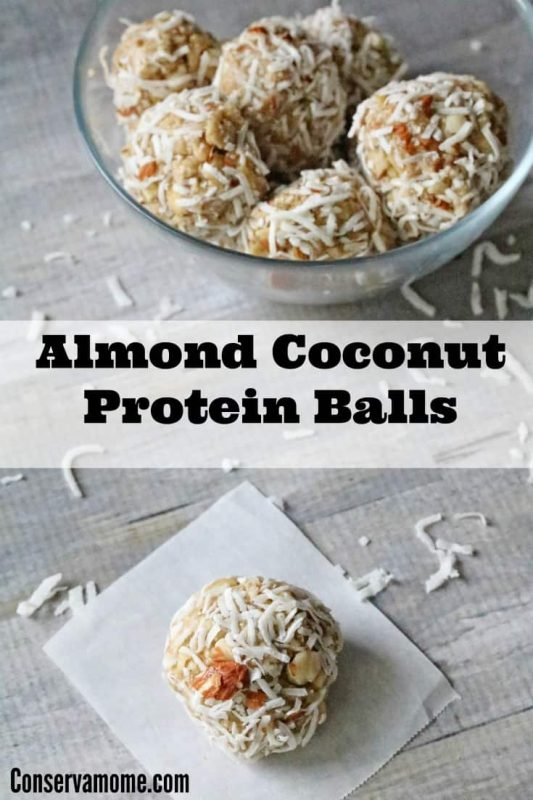 almond coconut protein bars