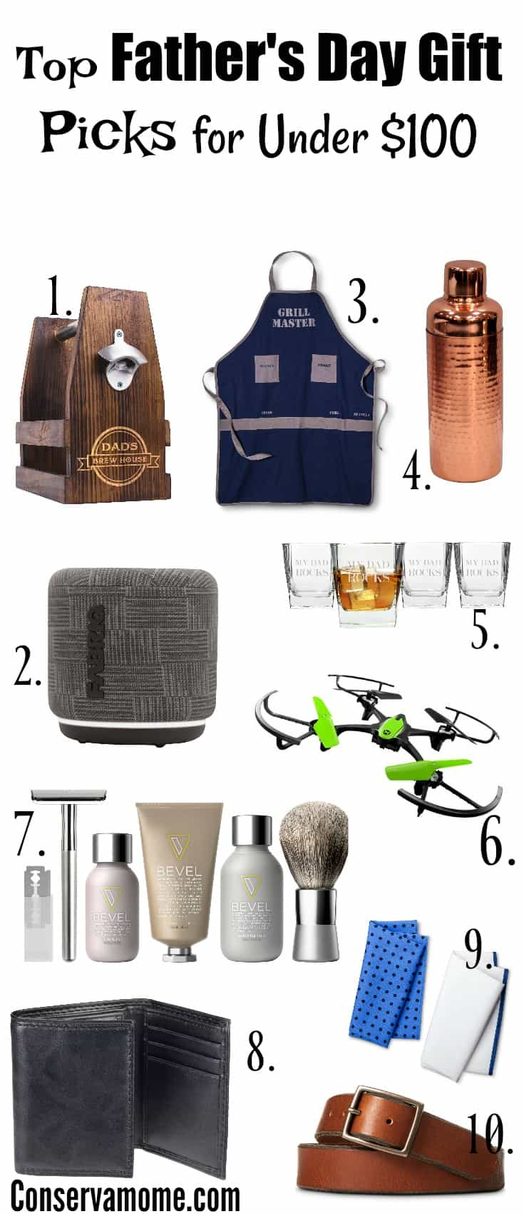 Conservamom 39 s top father 39 s day gift picks for under 100 for Best gifts for fathers day