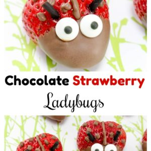 Chocolate Strawberry Ladybugs – Easy & Fun Dessert Idea!