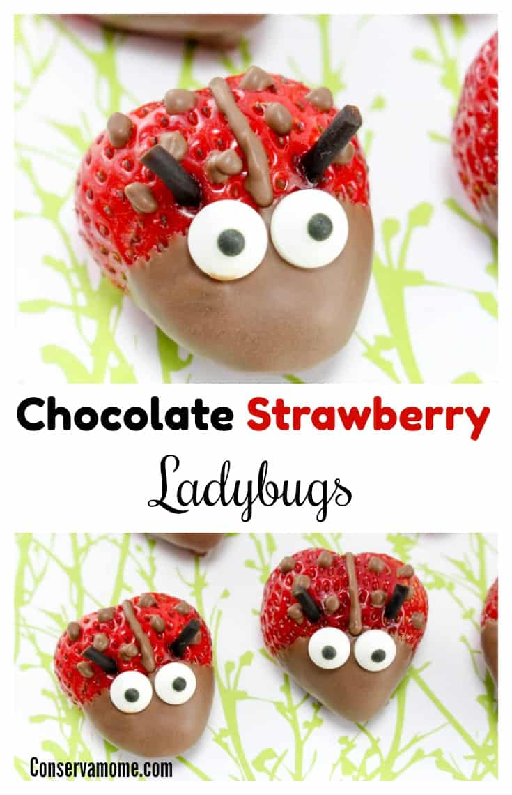 Here's a fun dessert idea that combines chocolate and strawberries into delicious Chocolate Strawberry Ladybugs.