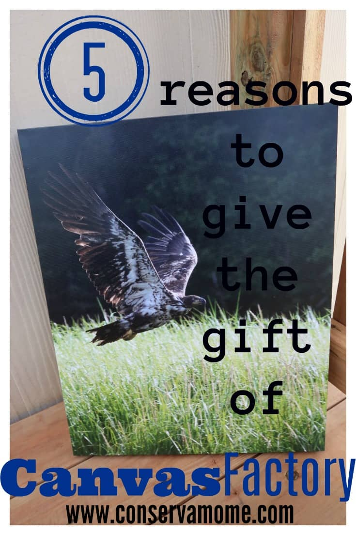 I've teamed up with Canvas Factory to bring you 5 reasons to Give the gift of Canvas.