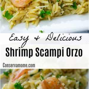 Easy and Delicious Shrimp Scampi Orzo