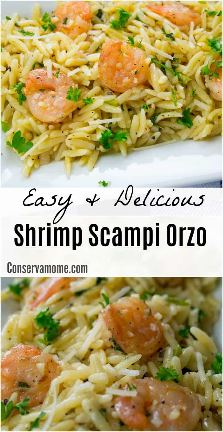 Easy Shrimp scampi orzo