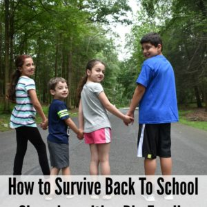 How to Survive Back to School Shopping with a Big Family