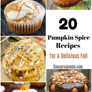 20 Pumpkin Spice Recipes for A Delicious Fall