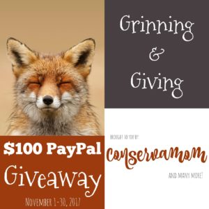 $100 Paypal Cash Giveaway ends 11/30