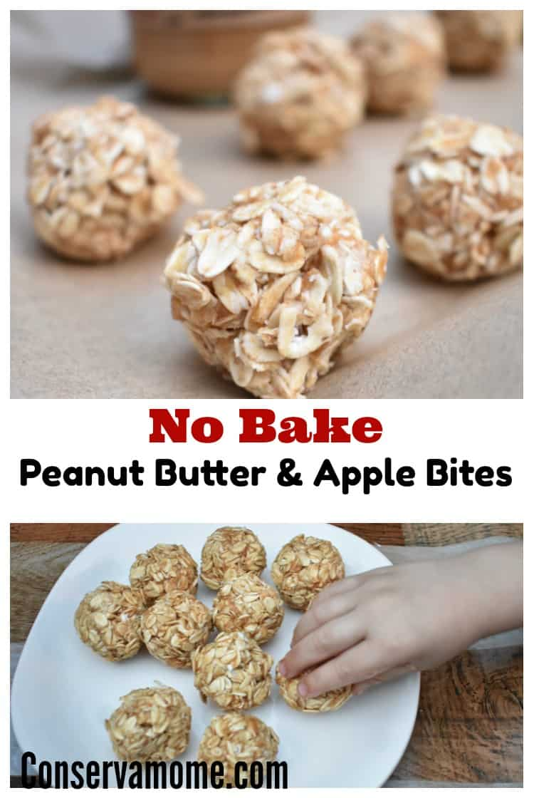 TheseEasy No Bake Peanut Butter & Apple Bites are not only absolutely delicious but a healthy snack for the whole family. Find out how easy it is to make them!