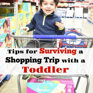 Tips for Surviving a Shopping Trip with a Toddler