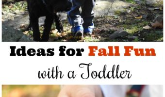 Ideas for Fall Fun with a Toddler