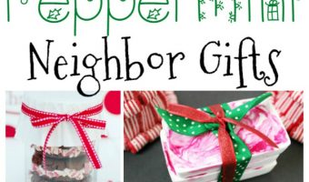 15 Peppermint Gift Ideas – A Fun Round up of Homemade Gifts