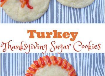 Turkey Thanksgiving turkeys
