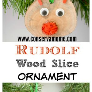 Rudolf Wood Slice Ornaments